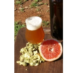 Grapefruit DIPA - 1 Gallon All Grain