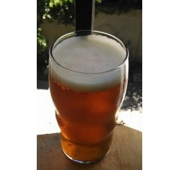 Amarillo Session IPA - 1 Gallon All Grain