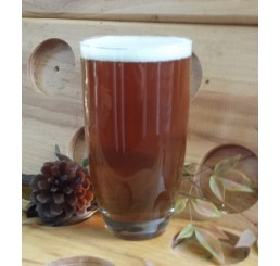 Holiday Spiced Ale