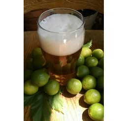 Lime Brewade