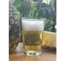 Pineapple Pale Ale - 1 Gallon All Grain