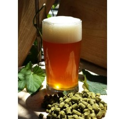 Tahoma Pale Ale - 1 Gallon All Grain